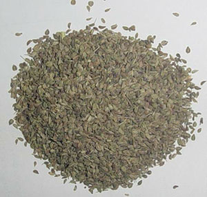 AJWAIN SEED OIL - Rakesh Sandal Industries