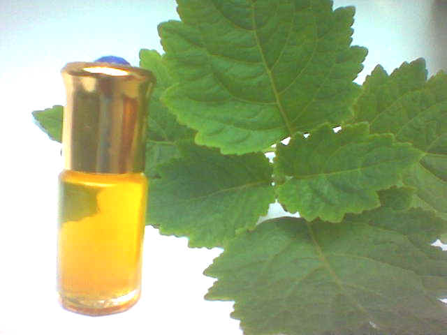 PATCHOULI OIL - Rakesh Sandal Industries