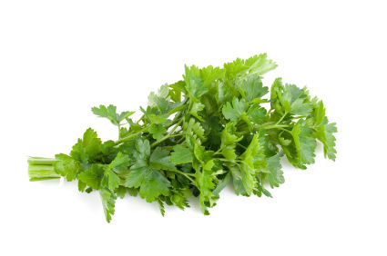 PARSLEY SEED OIL - Rakesh Sandal Industries