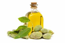 ALMOND OIL - Rakesh Sandal Industries