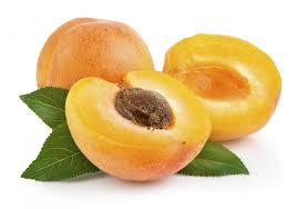 APRICOT OIL - Rakesh Sandal Industries