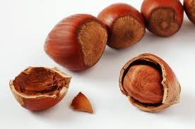 HAZEL NUT OIL - Rakesh Sandal Industries